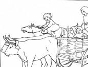 desenho de um boi para colorir