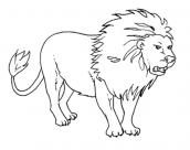desenhos para colorir leao