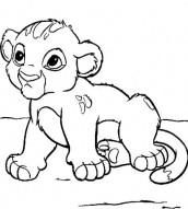 animais selvagens para colorir e imprimir