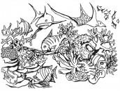 desenhos de animais marinhos para imprimir