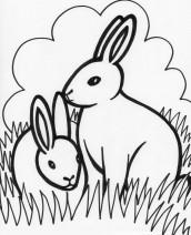 figuras e animais para imprimir